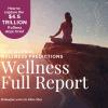 Maven Data Global Wellness Predictions 2021 6 Key Industries