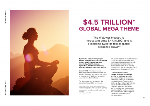 Maven Data Global Wellness Predictions
